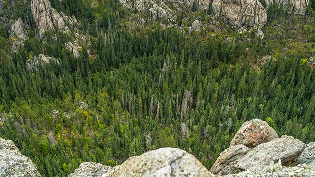 Hiking Black Hills